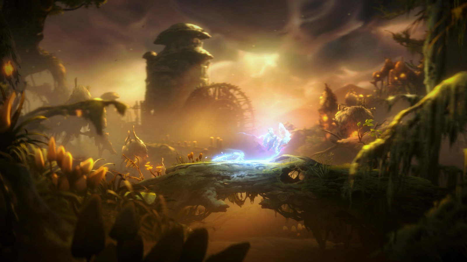 ori and the will of the wisps game wallpaper 67650