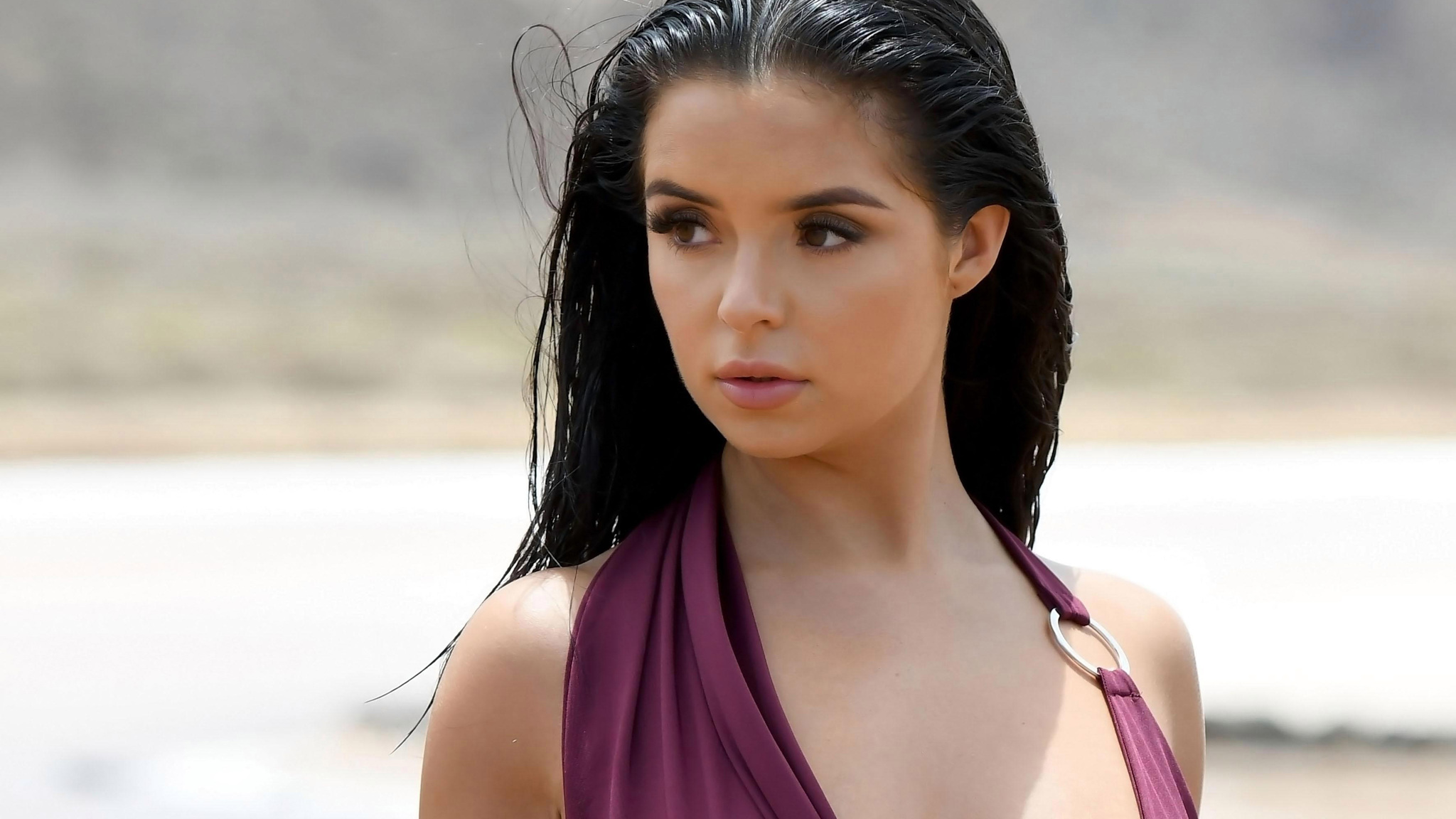 demi rose desktop wallpaper 66726
