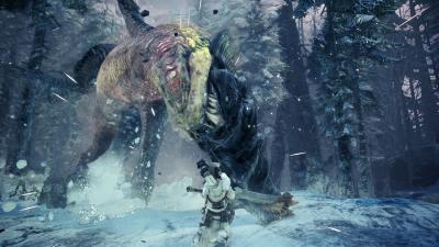 Monster Hunter World Iceborne Game Wallpaper 68439
