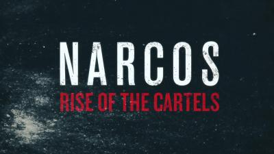 Narcos Rise of the Cartels Logo Wallpaper 69545