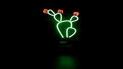 Cactus Neon Sign Wallpaper 66616