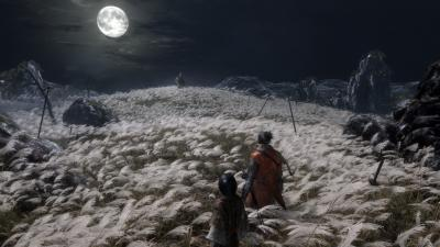 Sekiro Shadows Die Twice Widescreen Wallpaper 67305