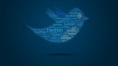 Twitter Bird Wallpaper 67337