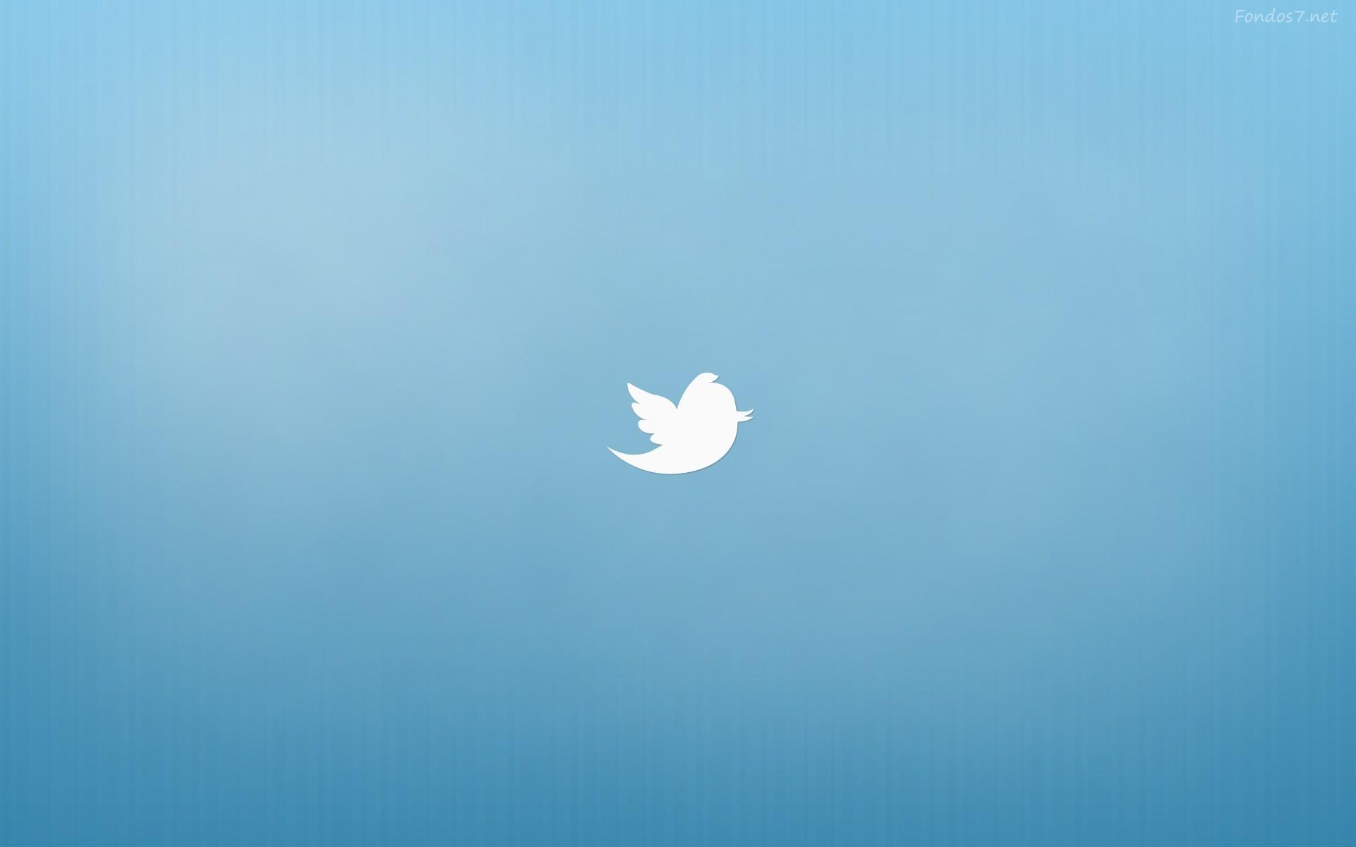 twitter icon logo wallpaper 67335