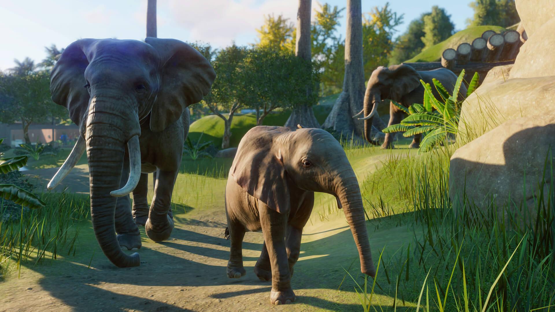 planet zoo elephants wallpaper 68848