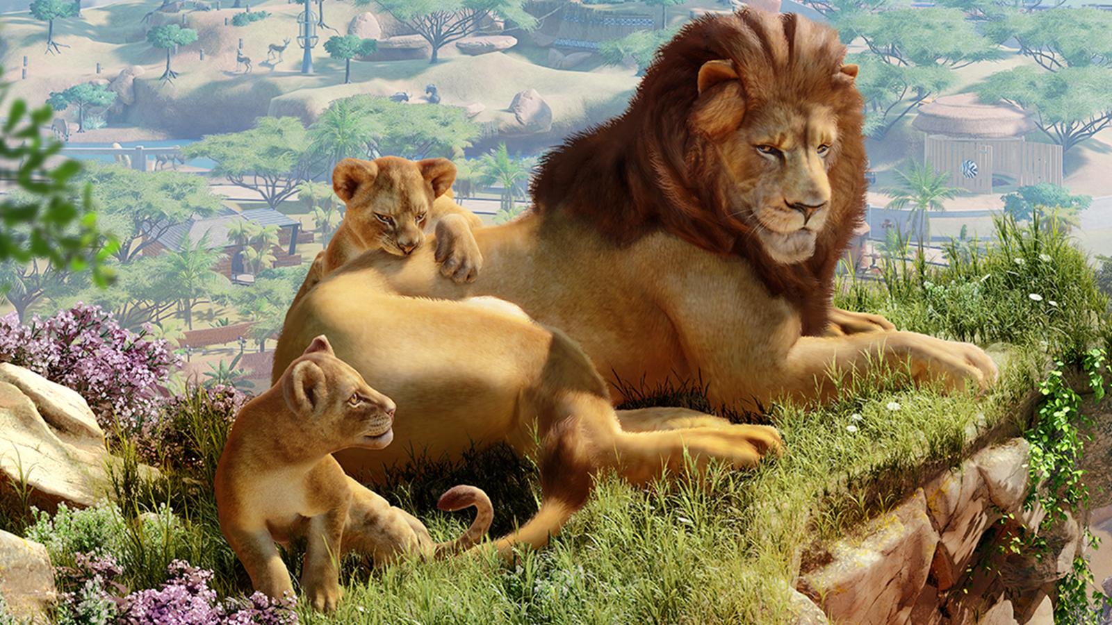 planet zoo lions wallpaper 68844