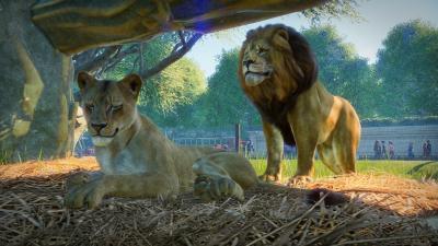 Planet Zoo Screenshot Wallpaper 68849