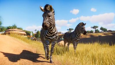 Planet Zoo Wallpaper 68839