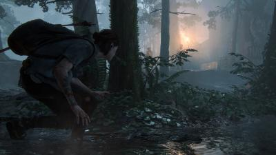 The Last of Us Part 2 Background Wallpaper 69693