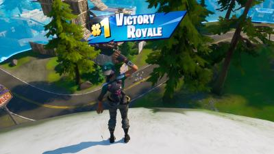 Fortnite Victory Wallpaper 71530