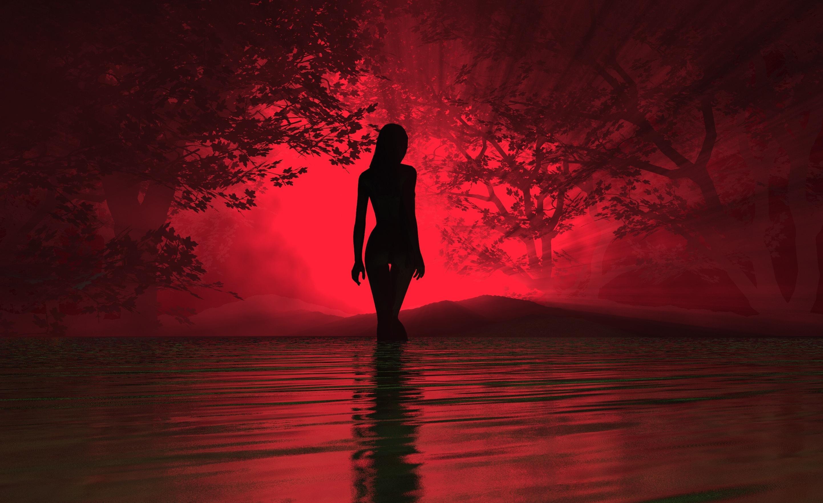 woman silhouette wallpaper 70572