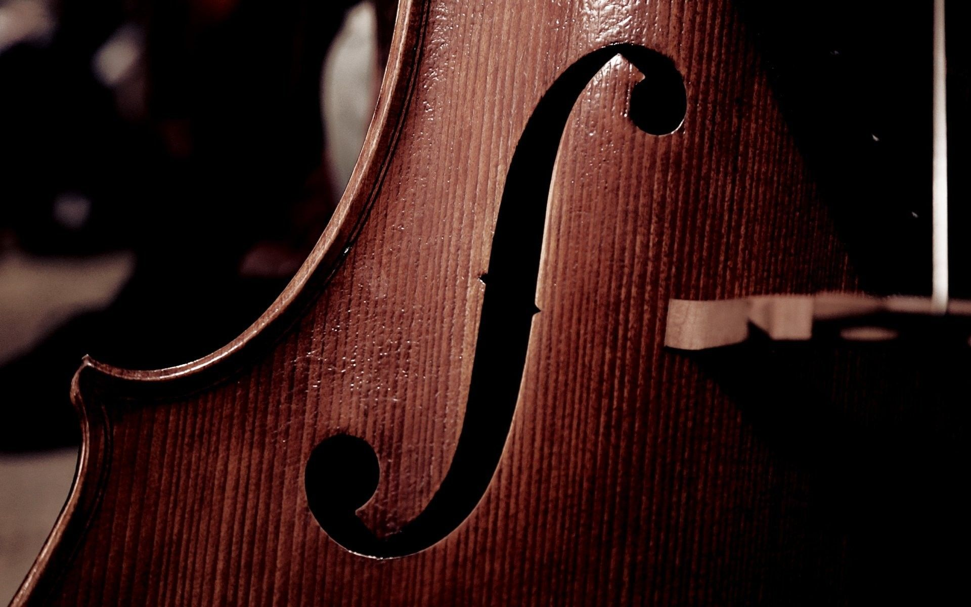 cello up close wallpaper 72344