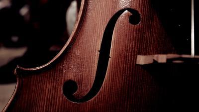 Cello Up Close Wallpaper 72344