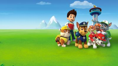 Paw Patrol Cartoon Wallpaper 72697