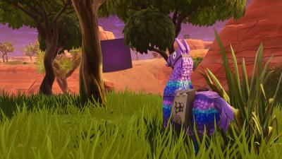 Fortnite Llama Desktop Wallpaper 71669