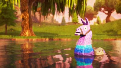 Fortnite Llama Widescreen Wallpaper 71675