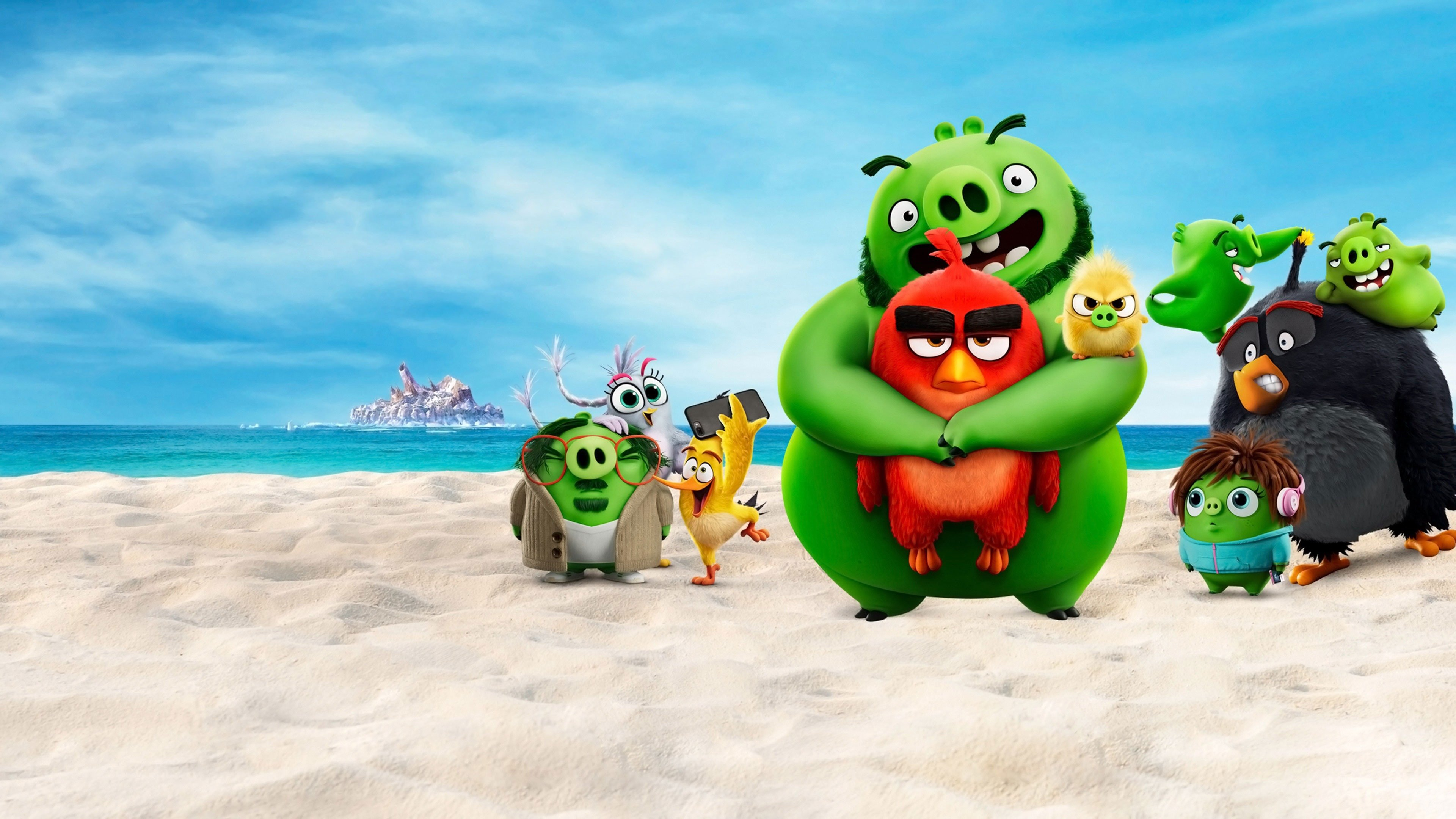 the angry birds movie hd wallpaper 70555