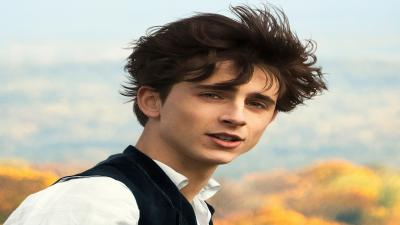 Timothee Chalamet Actor Wallpaper 70336