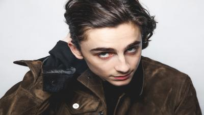 Timothee Chalamet Background Wallpaper 70337