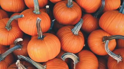 Fall Pumpkins HD Wallpaper 71815