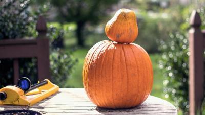 4K Halloween Pumpkin Wallpaper 75938