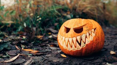 Scary Halloween Pumpkin Wallpaper 75937