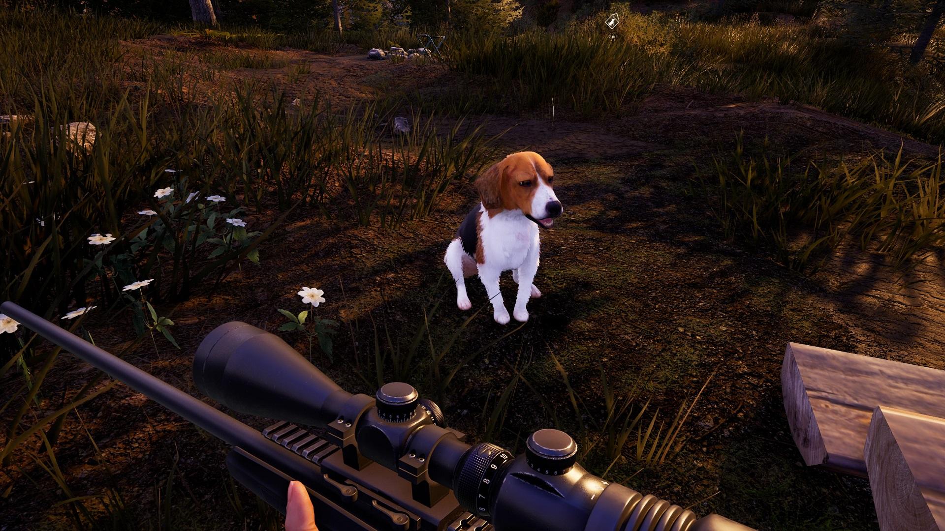 hunting simulator 2 dog wallpaper 74049