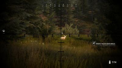 Hunting Simulator 2 Desktop Wallpaper 74055
