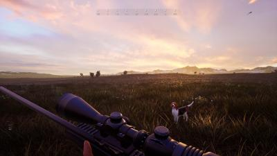Hunting Simulator 2 Wallpaper 74047