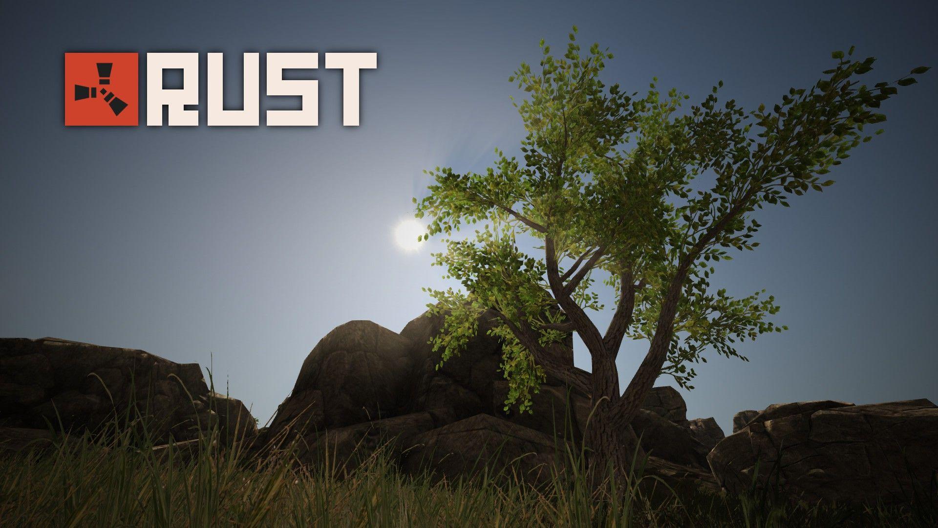 rust video game hd wallpaper 74562