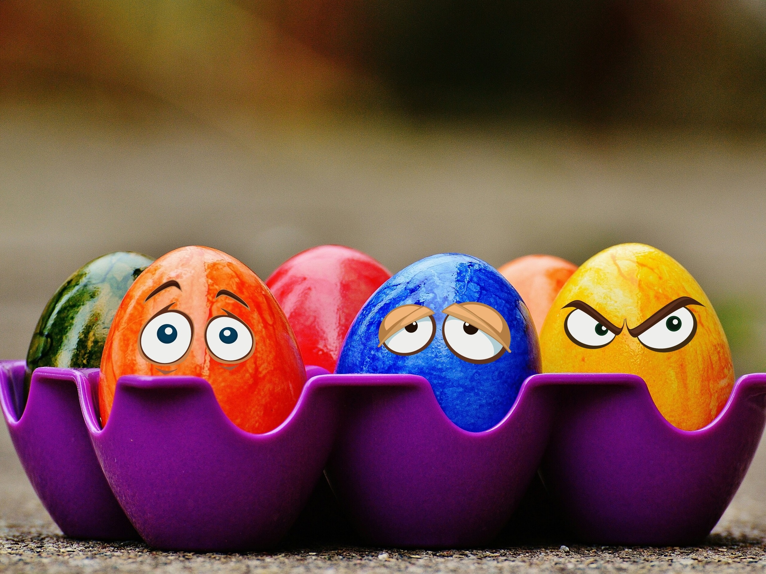 creative eggs wallpaper 73931
