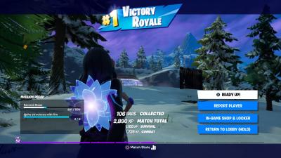 Fortnite Victory HD Wallpaper 73318