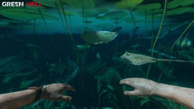 Green Hell Underwater Wallpaper 74645