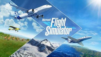 Microsoft Flight Simulator Video Game Wallpaper 72750