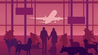 An Airport for Aliens Currently Run by Dogs Wallpaper 75257
